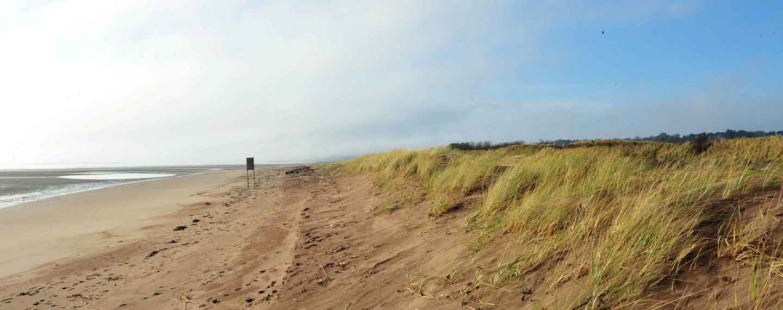 Deserted Coastlines